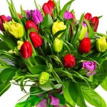 Tulip bouquets - Need4Flowers