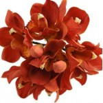 Orchid bouquets - Need4Flowers