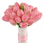 Pink tulip bouquets (0)
